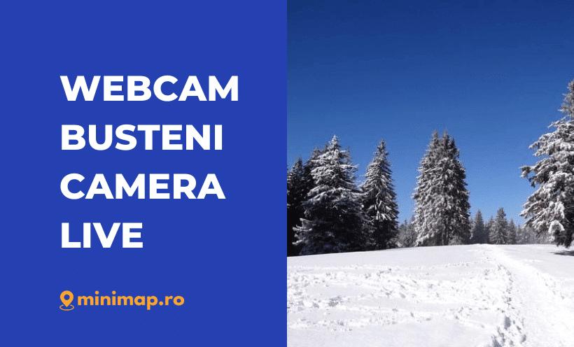 webcam busteni live