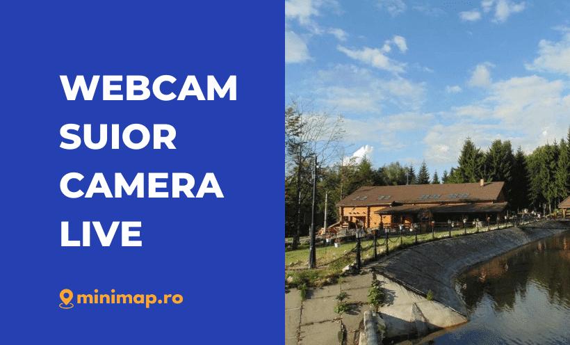 webcam suior live