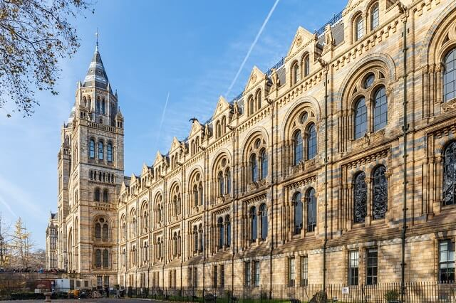 Muzee din Londra