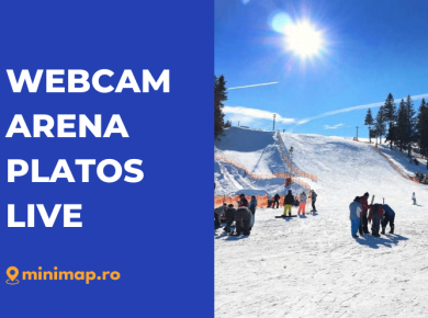 webcam arena platos live